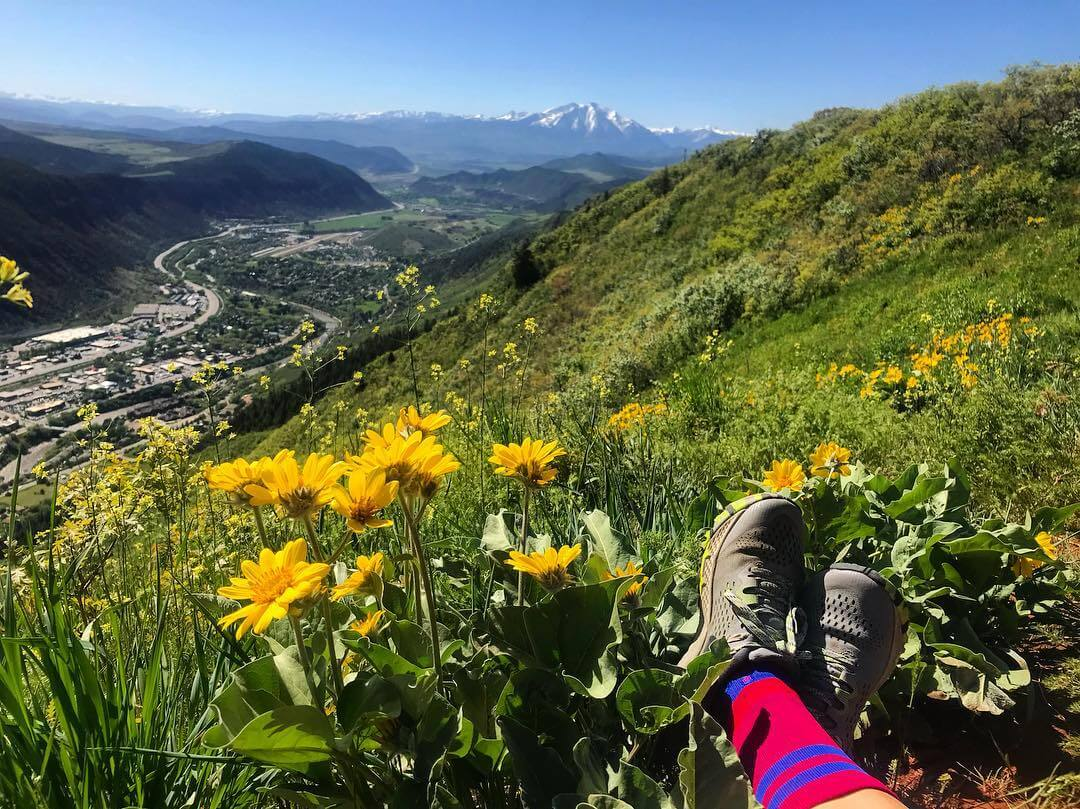 Red Mountain trail view of Mount Sopris and Flowers