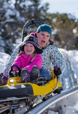 woman and child on alpine coaster